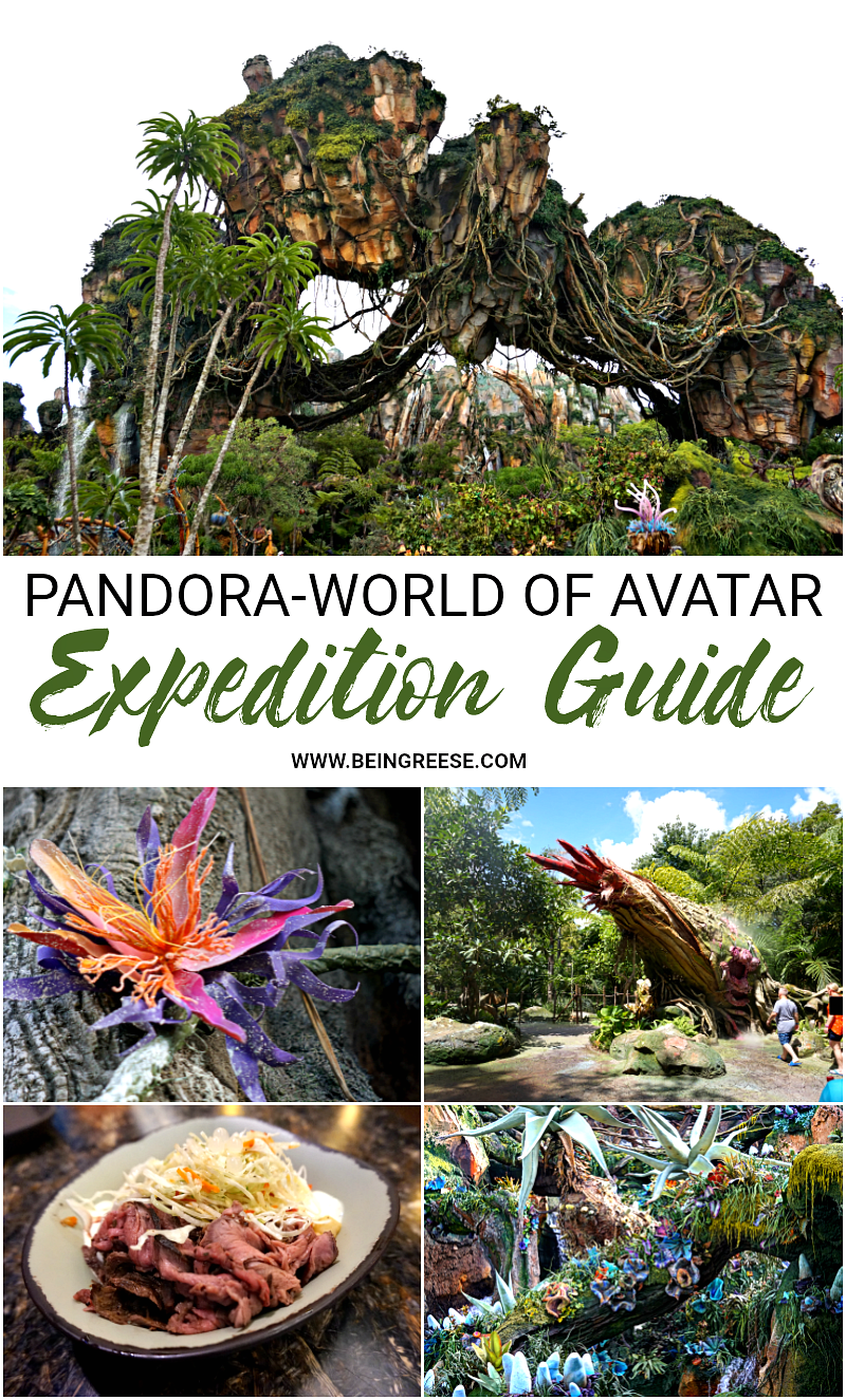 What to See, Ride, Eat and Drink at Pandora-World of Avatar