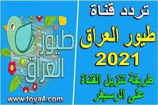 تردد قناة طيور العراق 2021 وطريقة تنزيل القناة على نايل سات