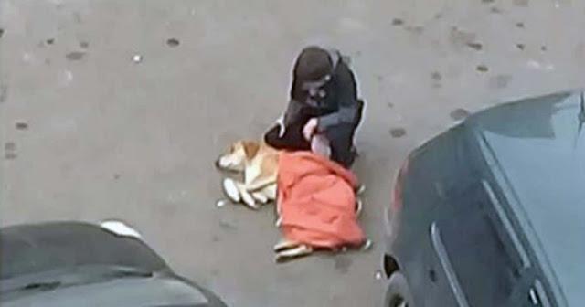 Добрый мальчик укрыл своей курткой замерзающую собаку