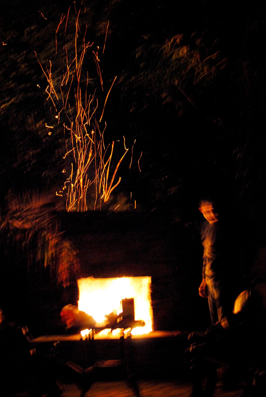 earl family blog: the annual Christmas tree burning!