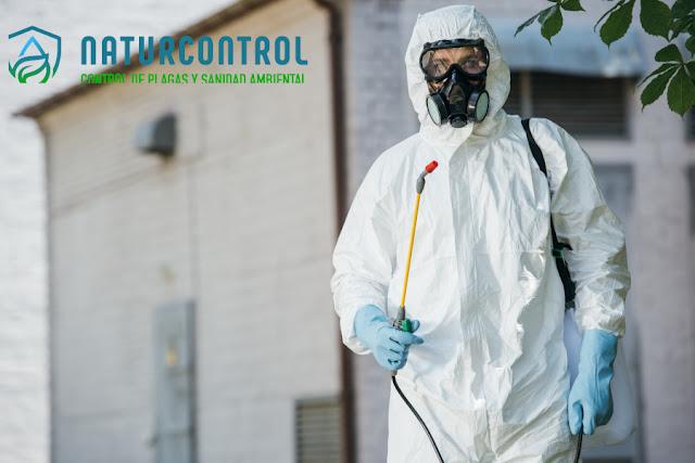 Empresa control de plagas Pamplona