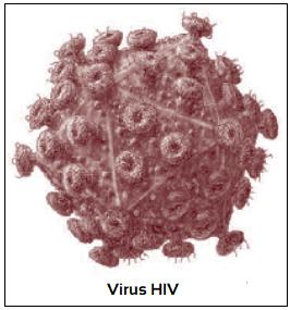 Penyakit AIDS yang terjadi disebabkan oleh virus HIV