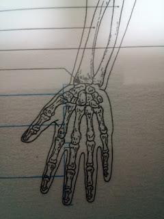 手首の画像