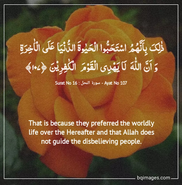 Beautiful Quran Quotes About Life