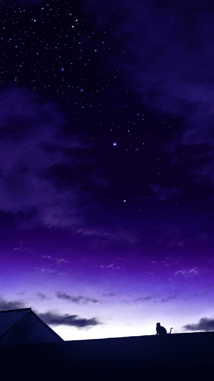 Watching the night sky