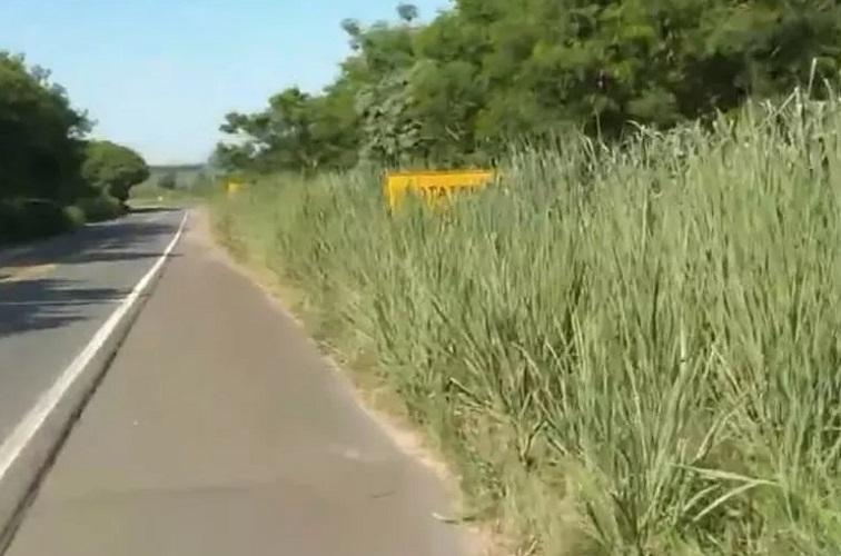 Caso NH3: Sequestrador foi visto com as duas crianças próximo a Curaçá - Portal Spy Noticias