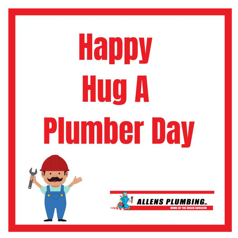 National Hug a Plumber Day Wishes