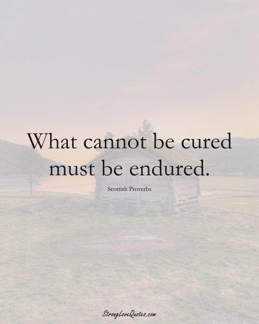 What cannot be cured must be endured. (Scottish Sayings);  #EuropeanSayings