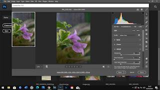 Cara edit foto menggunkan camera raw filter