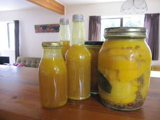 two bottles of bright yellow sauce and two jars of preserved lemons with spices and bay leaves visible