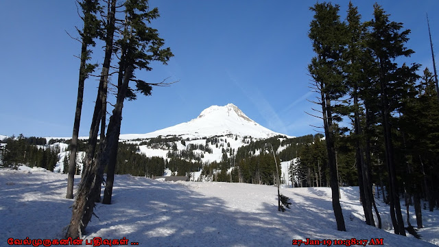 Mount Hood Meadows Ski area