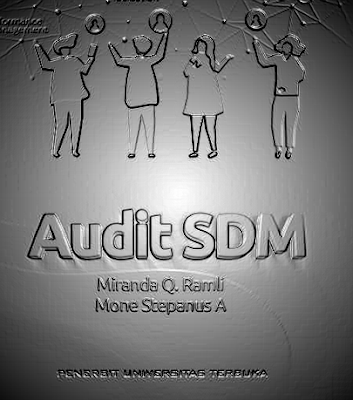 EKMA4476 Audit SDM