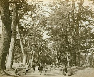 Unique Japan Tour Tokaido 1825