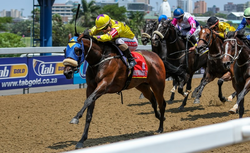 Horse Racing at Hollywoodbets Greyville
