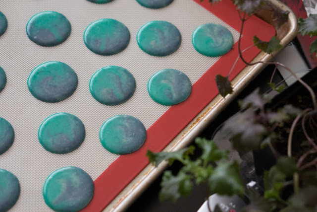 cosmic macarons piped and resting on a silpat mat