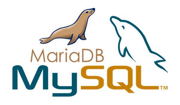 MariaDB là gì? Cách cài đặt và kết nối MariaDB