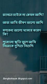Breakup shayari bangla photo