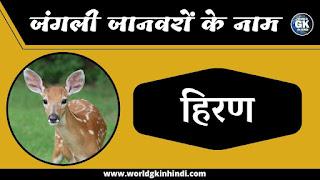 Deer animal name in hindi