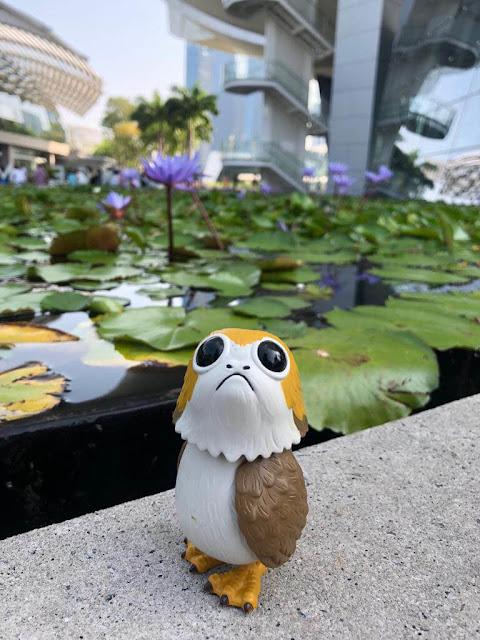 Bạn sẽ ở đâu khi đi tham quan Singapore?