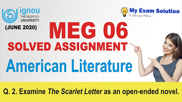 the scarlet letter novel, meg 06, ignou meg assignment
