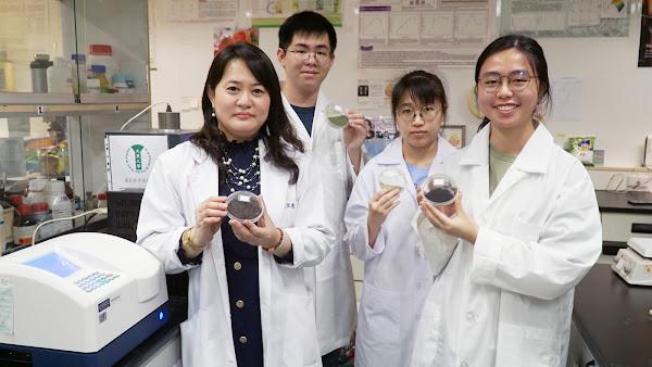 海藻加工附加價值開發 大葉藥保系助產業科技化