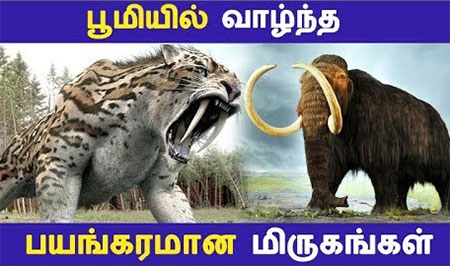 Some animals are very biggest and scary in ancient times. Here we are going to see about the list