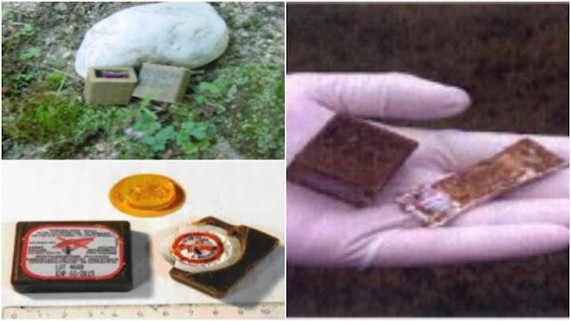 Εναέρια διανομή εμβολίων κατά της λύσσας σε περιοχές της Ηπείρου