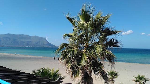 palmy, plaże na Sycylii, jak wyglądają