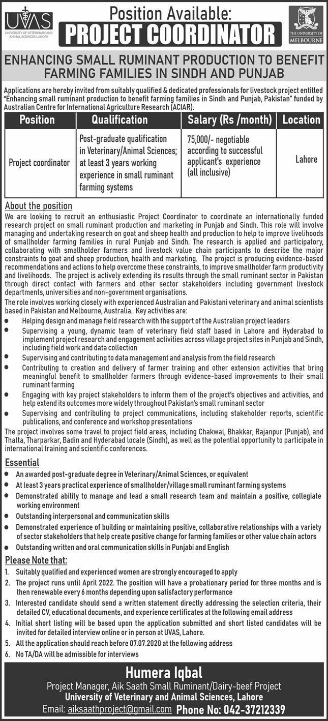University of Veterinary and Animal Sciences Lahore Jobs