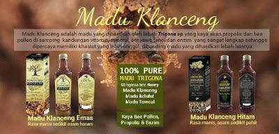 Khasiat dan manfaat madu klanceng