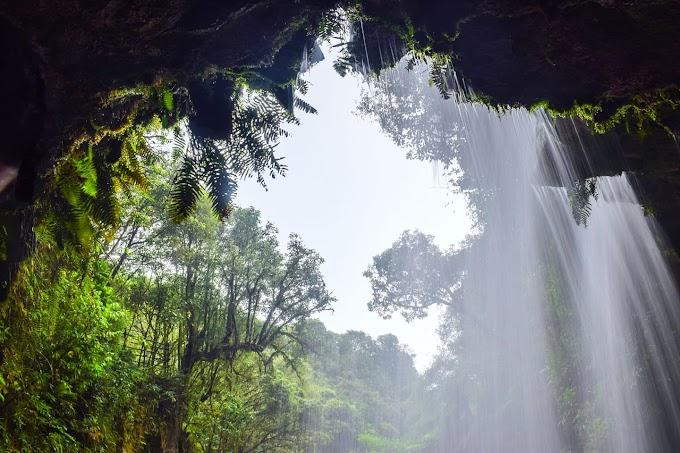 Nature's curtain Meghalaya