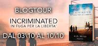 http://ilsalottodelgattolibraio.blogspot.it/2016/10/blogtour-incriminated-di-mg-reyes-5.html