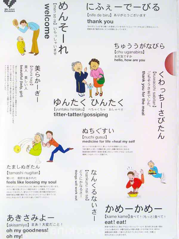 Plastic document protector in English, Japanese and Uchinaguchi