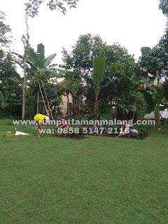 Suplay dan tanam rumput jepang di daerah Malang tahun 2021