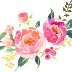 Water Colour Flower PNG 20