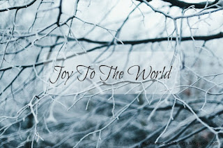 http://scattered-scribblings.blogspot.com/2016/12/joy-to-world_24.html