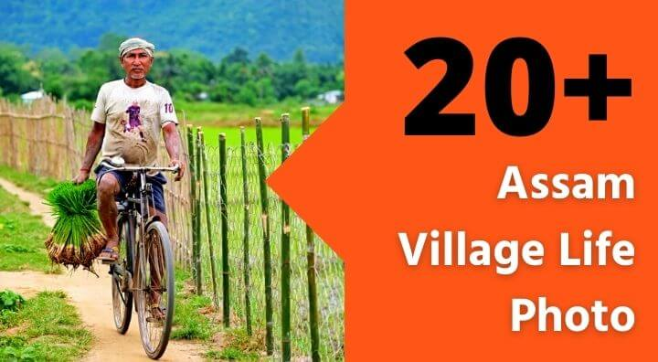 Assam Village Life photo