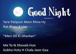 Good Night Sms In Hindi Good Night Hindi Sms Images Jaanu Shayari