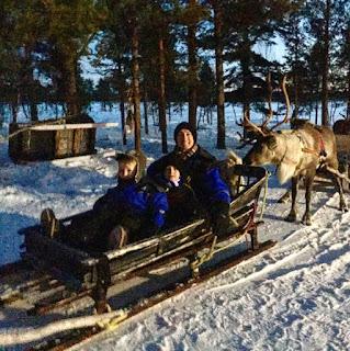 a reindeer sleigh in lapland