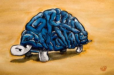 design pigrizia mentale categorizzazione ed organizzazione della conoscenza in un Blog media