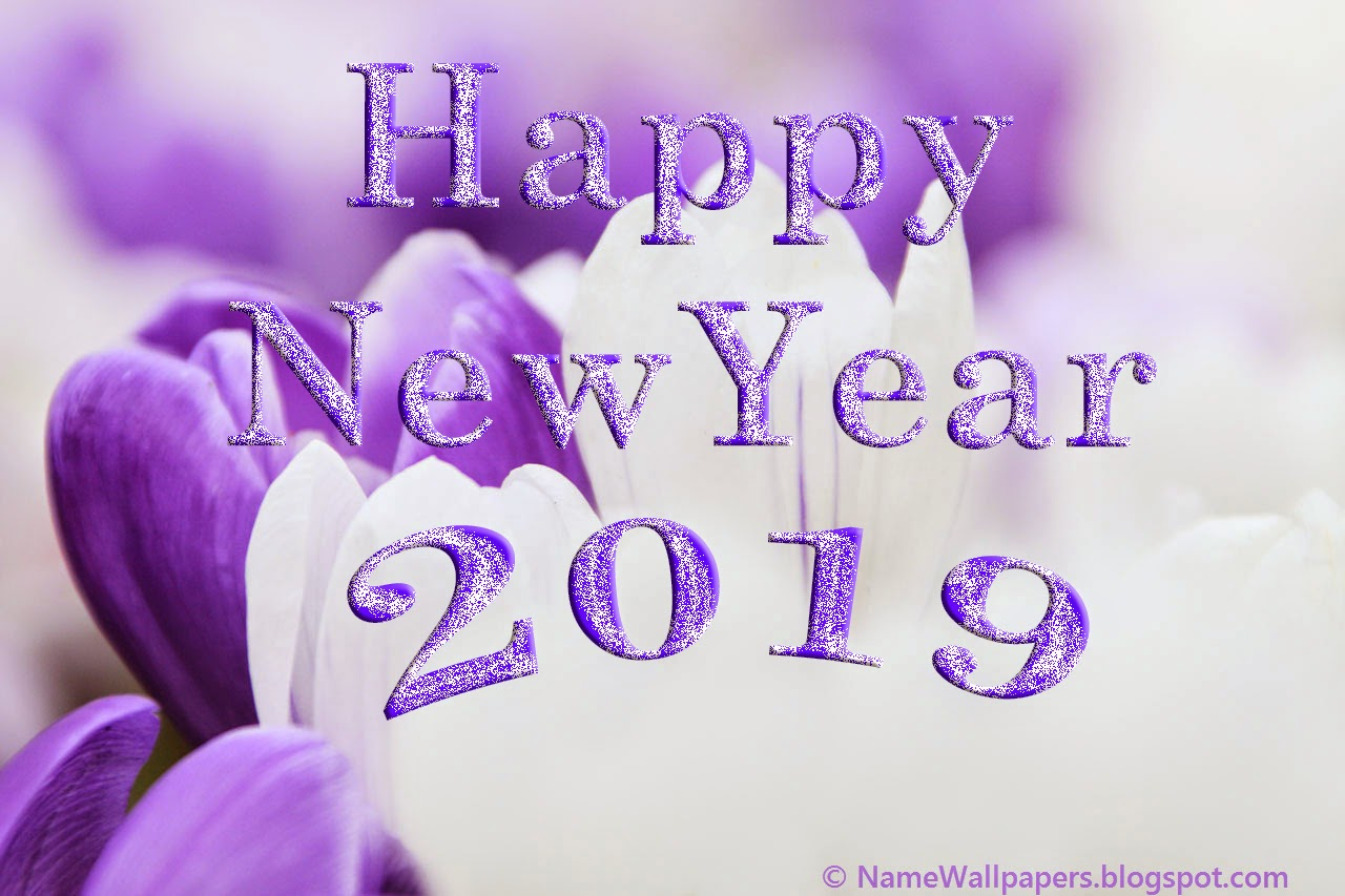 Best Of New Year 2019 Wallpapers Hd For: Happy New Year 2019 Wallpapers HD