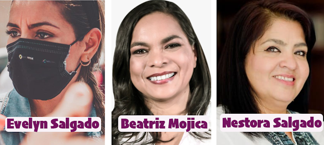 La transformación llegará a Guerrero de la mano de una mujer: Mario Delgado
