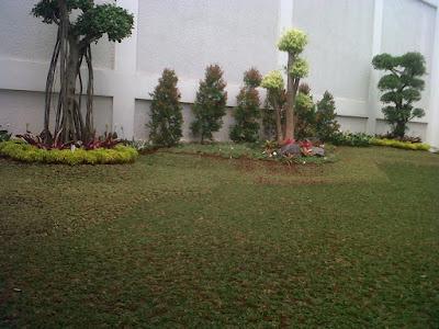 COntoh-Taman-Minimalis-Murah