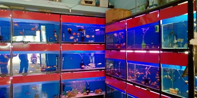 Shree Datta Aquarium