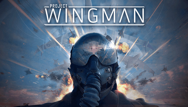 Project Wingman Developers Share Story Mode Details Ahead Of Release
