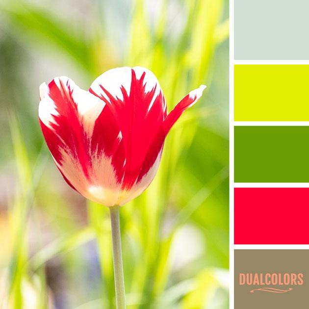 color_paleta_198