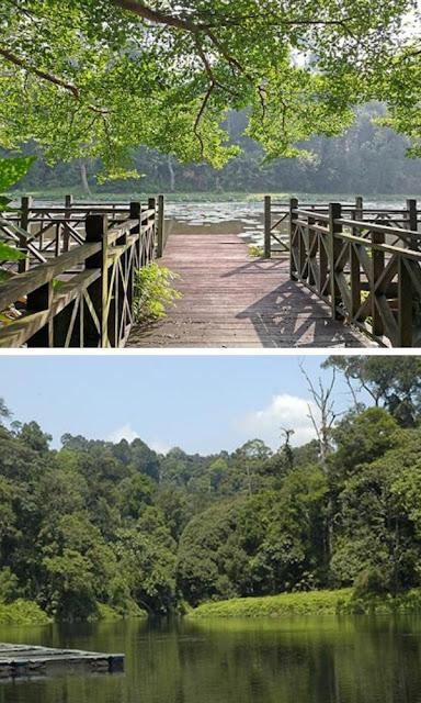 Taman Botani Negara jambatan tasik
