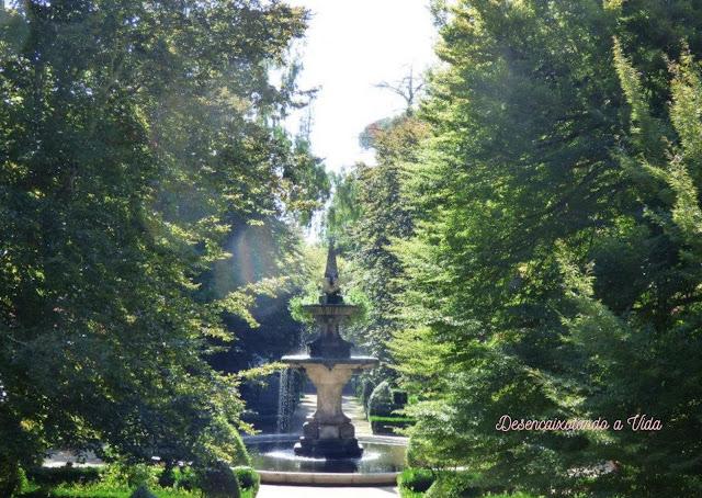 quadrado central - Jardim botânico Universidade de Coimbra- Desencaixotando a vida