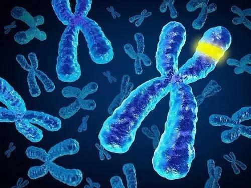 Resultado de imagen para genes