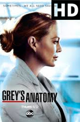 Greys Anatomy Temporada 17 Full HD